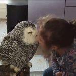 I'll peck ya mate!
